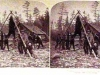 card-71-camp-scene-bear-cr-1893