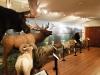 Animals & mural fr back