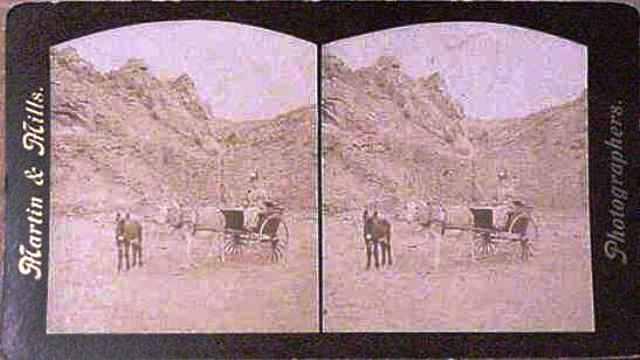 card-19-mule-lady-cart-mtns