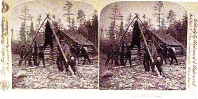 card-71-camp-scene-bear-cr-1893